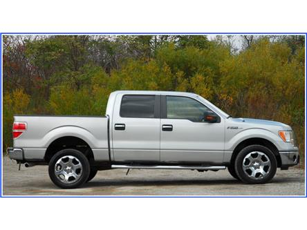 2009 Ford F-150 XLT (Stk: D96200AX) in Kitchener - Image 2 of 14