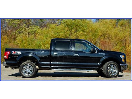 2017 Ford F-150 XLT (Stk: D96210A) in Kitchener - Image 2 of 17