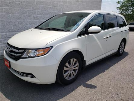 2014 Honda Odyssey EX (Stk: 19559B) in Kingston - Image 1 of 28