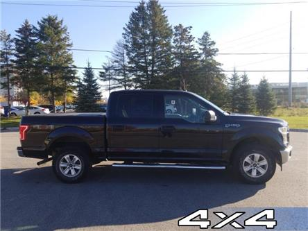 2017 Ford F-150 XLT (Stk: P8890) in Unionville - Image 1 of 13
