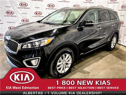 2017 Kia Sorento 2.0L LX Turbo (Stk: 7393) in Edmonton - Image 1 of 33