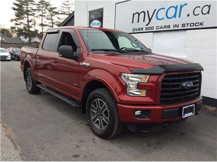 2016 Ford F-150 XLT (Stk: 191719) in Richmond - Image 1 of 19