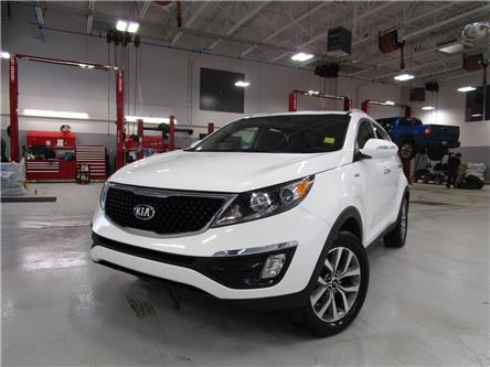 2014 Kia Sportage EX (Stk: 7906) in Moose Jaw - Image 1 of 32