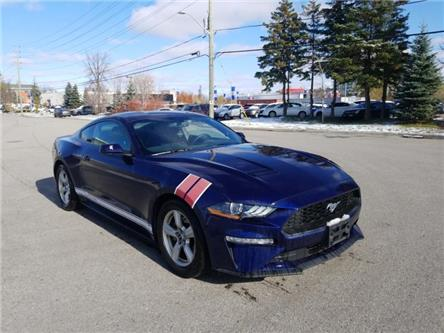 2019 Ford Mustang EcoBoost (Stk: 53161) in Unionville - Image 2 of 13