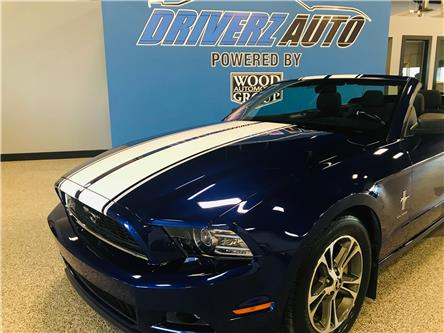 2014 Ford Mustang V6 Premium (Stk: B12171A) in Calgary - Image 2 of 12