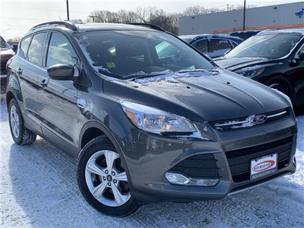 2016 Ford Escape SE (Stk: 19T926A) in Midland - Image 1 of 15