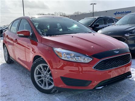 2016 Ford Focus SE (Stk: 19T929A) in Midland - Image 1 of 14