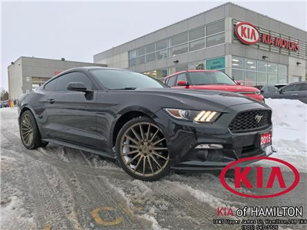 2015 Ford Mustang V6 (Stk: TL20001A) in Hamilton - Image 1 of 12