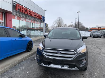 2019 Ford Escape SE (Stk: KUA82979) in Sarnia - Image 2 of 15