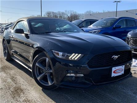 2015 Ford Mustang V6 (Stk: RC807A) in Midland - Image 1 of 12