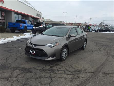 2019 Toyota Corolla  (Stk: P0056030) in Cambridge - Image 2 of 15