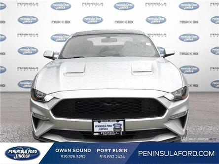 2019 Ford Mustang EcoBoost (Stk: 19MU12) in Owen Sound - Image 2 of 24