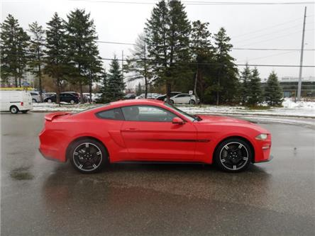 2019 Ford Mustang  (Stk: P8956) in Unionville - Image 1 of 13