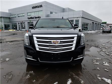 2017 Cadillac Escalade Platinum (Stk: NR13794) in Newmarket - Image 2 of 30