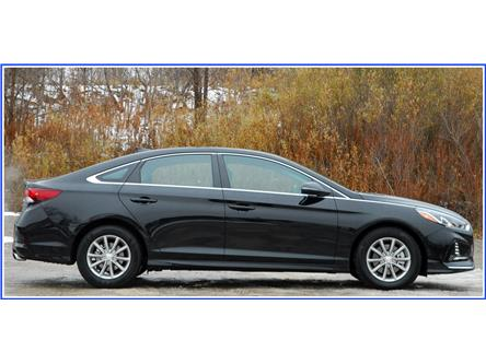 2019 Hyundai Sonata ESSENTIAL (Stk: OP3925R) in Kitchener - Image 2 of 16