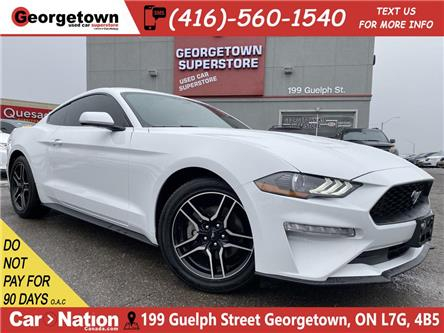 2019 Ford Mustang EcoBoost Fastback |CLEAN CARFAX |TINTS|AUTO|BU CAM (Stk: P12790) in Georgetown - Image 1 of 27