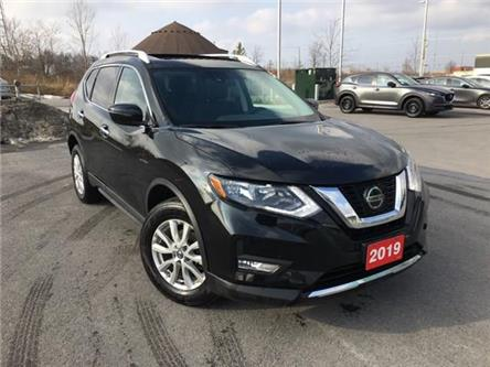 2019 Nissan Rogue  (Stk: MX1116) in Ottawa - Image 1 of 20