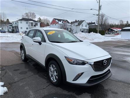 2017 Mazda CX-3 GS (Stk: 6243A) in Alma - Image 2 of 8