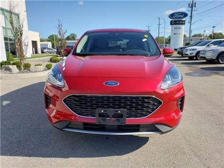 2020 Ford Escape SE (Stk: VEP18989) in Chatham - Image 2 of 12