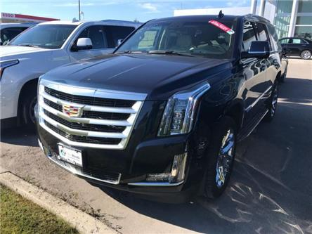 2019 Cadillac Escalade Premium Luxury (Stk: R272887) in Newmarket - Image 1 of 22
