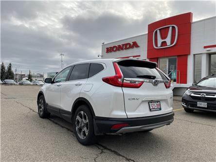 2019 Honda CR-V EX-L (Stk: H4866) in Waterloo - Image 2 of 18