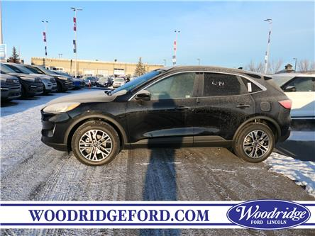 2020 Ford Escape SEL (Stk: L-84) in Calgary - Image 2 of 5