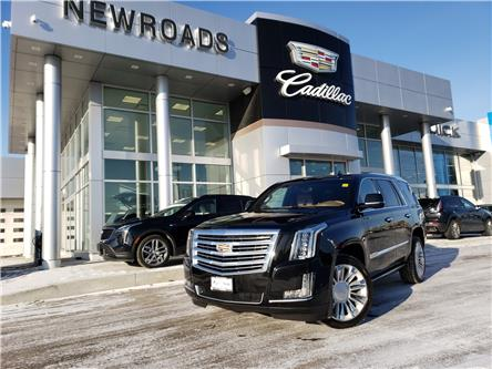 2017 Cadillac Escalade Platinum (Stk: NR13794) in Newmarket - Image 1 of 30