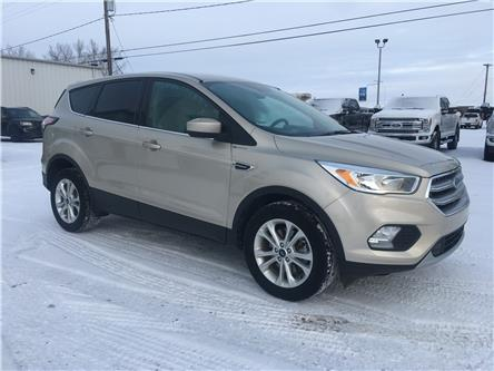 2017 Ford Escape SE (Stk: 9180A) in Wilkie - Image 1 of 19