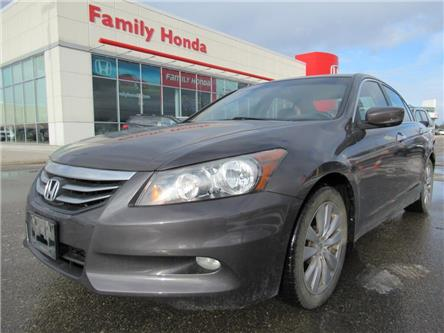 2011 Honda Accord Sedan 4dr V6 Auto EX-L | BLUETOOTH | NAVI | (Stk: 800188T) in Brampton - Image 1 of 21