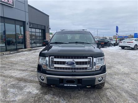 2013 Ford F-150  (Stk: 3863) in Thunder Bay - Image 2 of 6