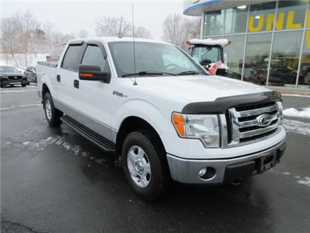 2012 Ford F-150 XLT (Stk: 19203B) in Hebbville - Image 2 of 14