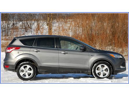 2014 Ford Escape SE (Stk: D96310AB) in Kitchener - Image 2 of 17