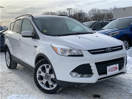 2015 Ford Escape SE (Stk: 19T272A) in Midland - Image 1 of 20