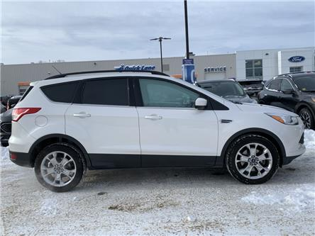 2015 Ford Escape SE (Stk: 19T272A) in Midland - Image 2 of 20