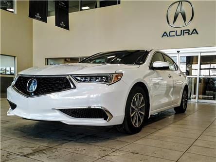 2019 Acura TLX Tech (Stk: 19TL0183) in Red Deer - Image 1 of 12