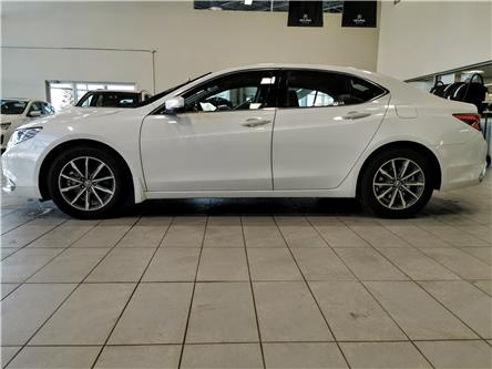 2019 Acura TLX Tech (Stk: 19TL0183) in Red Deer - Image 2 of 12