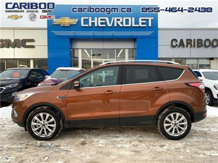 2017 Ford Escape Titanium (Stk: 9726) in Williams Lake - Image 2 of 41