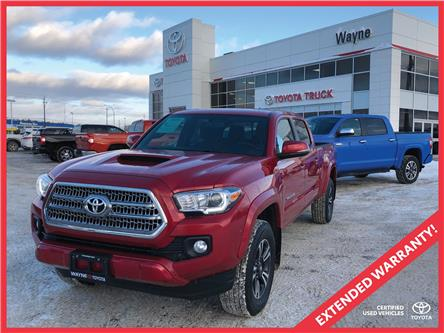 2017 Toyota Tacoma SR5 (Stk: 11062) in Thunder Bay - Image 1 of 30