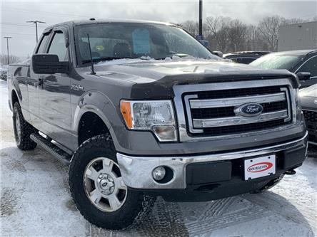 2014 Ford F-150 XLT (Stk: 048PTA) in Midland - Image 1 of 14