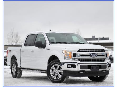 2019 Ford F-150 XLT (Stk: 9F6600A) in Kitchener - Image 1 of 18