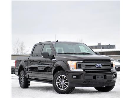 2019 Ford F-150 XLT (Stk: 9F1520A) in Kitchener - Image 1 of 19
