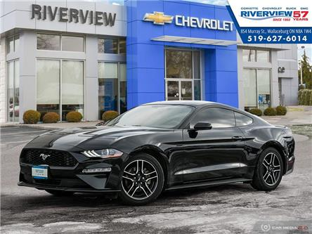 2019 Ford Mustang  (Stk: 19207B) in WALLACEBURG - Image 1 of 27