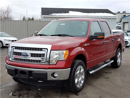 2014 Ford F-150 XLT (Stk: 10661) in Lower Sackville - Image 1 of 26