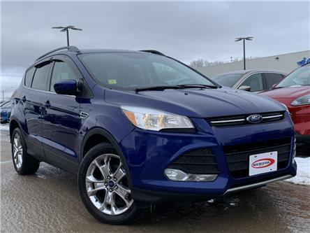 2016 Ford Escape SE (Stk: 20T82A) in Midland - Image 1 of 18