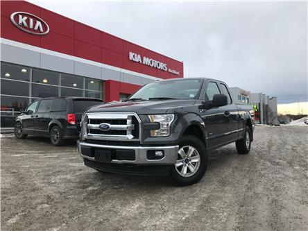 2017 Ford F-150 XL (Stk: P0372) in Calgary - Image 1 of 23
