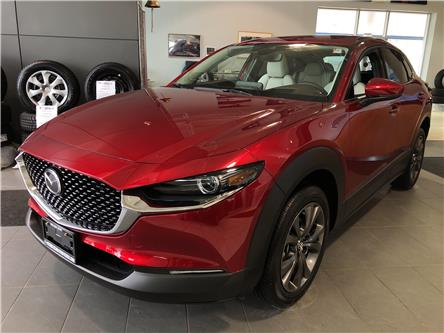 2020 Mazda CX-30 GT (Stk: SN1587) in Hamilton - Image 1 of 15
