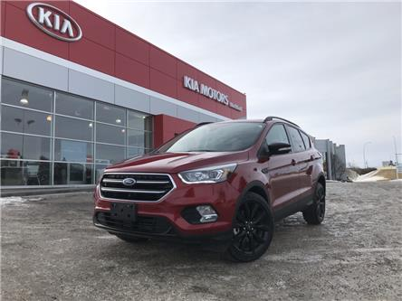 2019 Ford Escape Titanium (Stk: P0470) in Calgary - Image 1 of 17