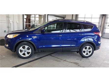 2015 Ford Escape SE (Stk: P10221) in Ottawa - Image 2 of 13