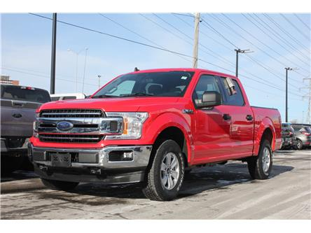 2019 Ford F-150  (Stk: 954090) in Ottawa - Image 1 of 15