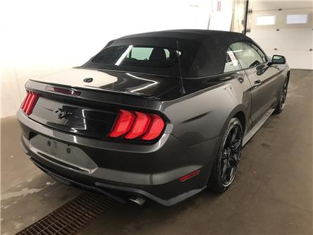 2019 Ford Mustang EcoBoost (Stk: 3665) in Kingston - Image 2 of 3